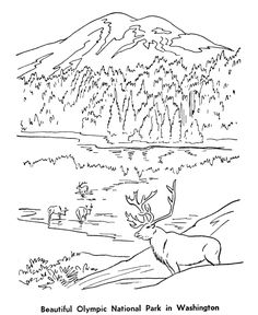 Drawn river coloring book 3 coloring page Olympic Coloring