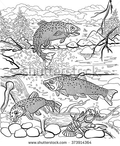 Drawn river coloring book Under swim Trout Adult life