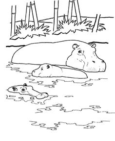 Drawn river coloring book Sven pages page Pinteres… Wild