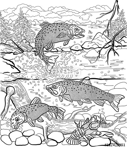 Drawn river coloring page On  river