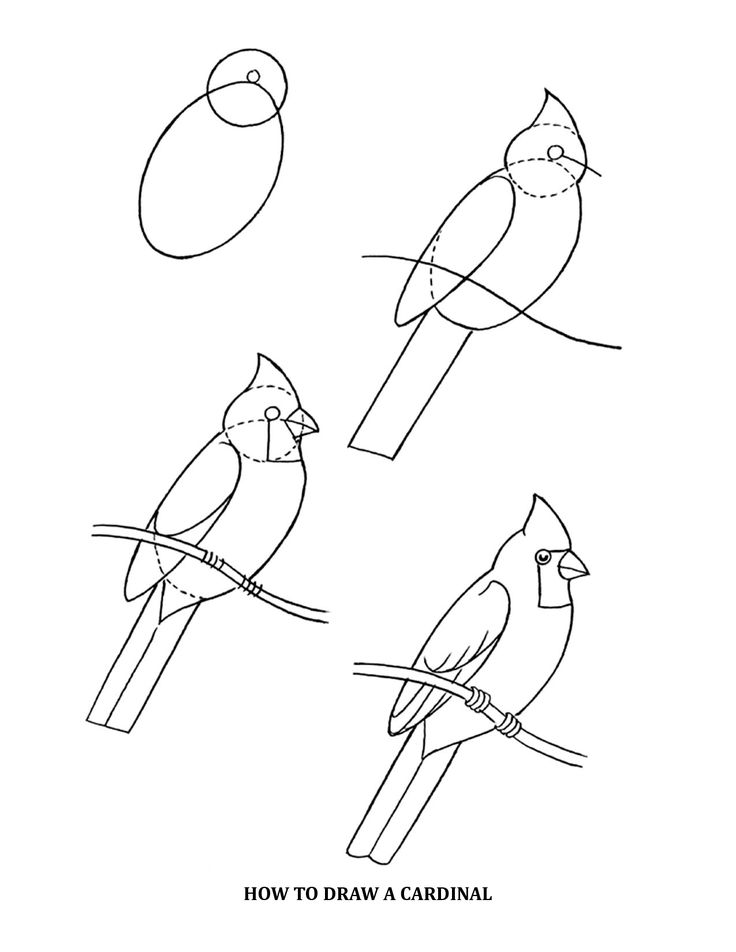 Drawn river elementary drawing exam nature Drawing cardinal draw on Pinterest