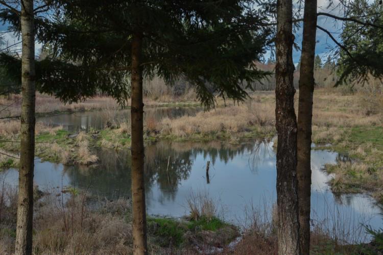 Drawn river farm landscape Part glencoe_swale1 Two: e1445979854712 02