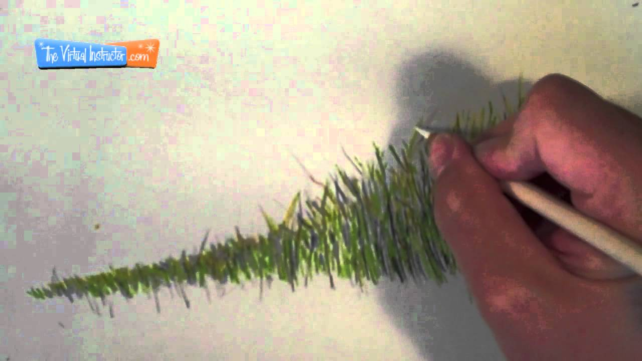 Drawn river grass To Colored Draw  How