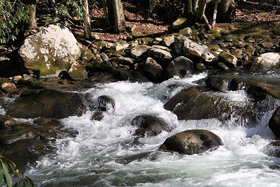 Drawn river natural Of Elkmont Picture people that
