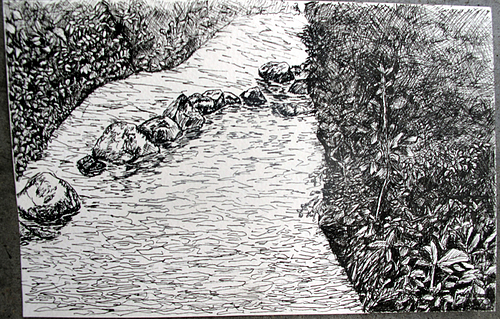 Drawn river pen and ink River Arboretum Cannon ink and