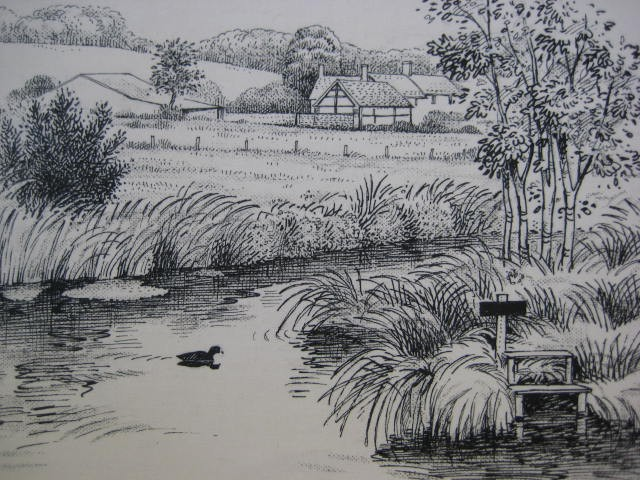 Drawn river pen and ink On Ink Ducks 1970s c