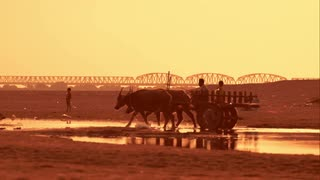 Drawn river sunset Buffaloes Crossing and unidentified cart