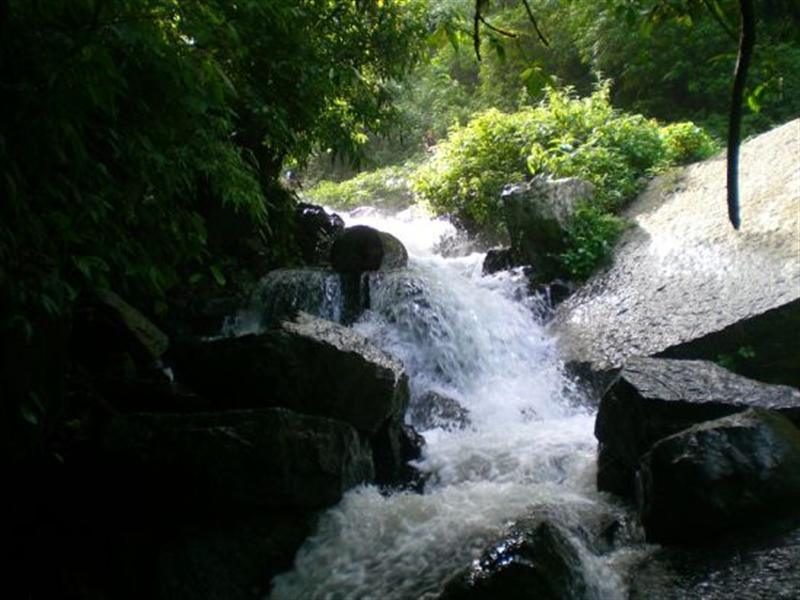 Drawn river the brook As Meritnation Brook review brook