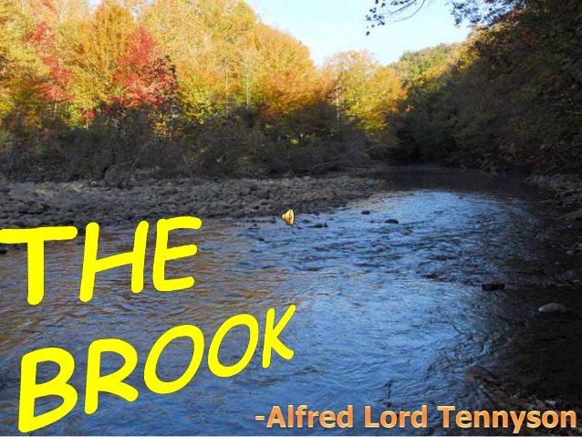 Drawn river the brook  brook The ppt