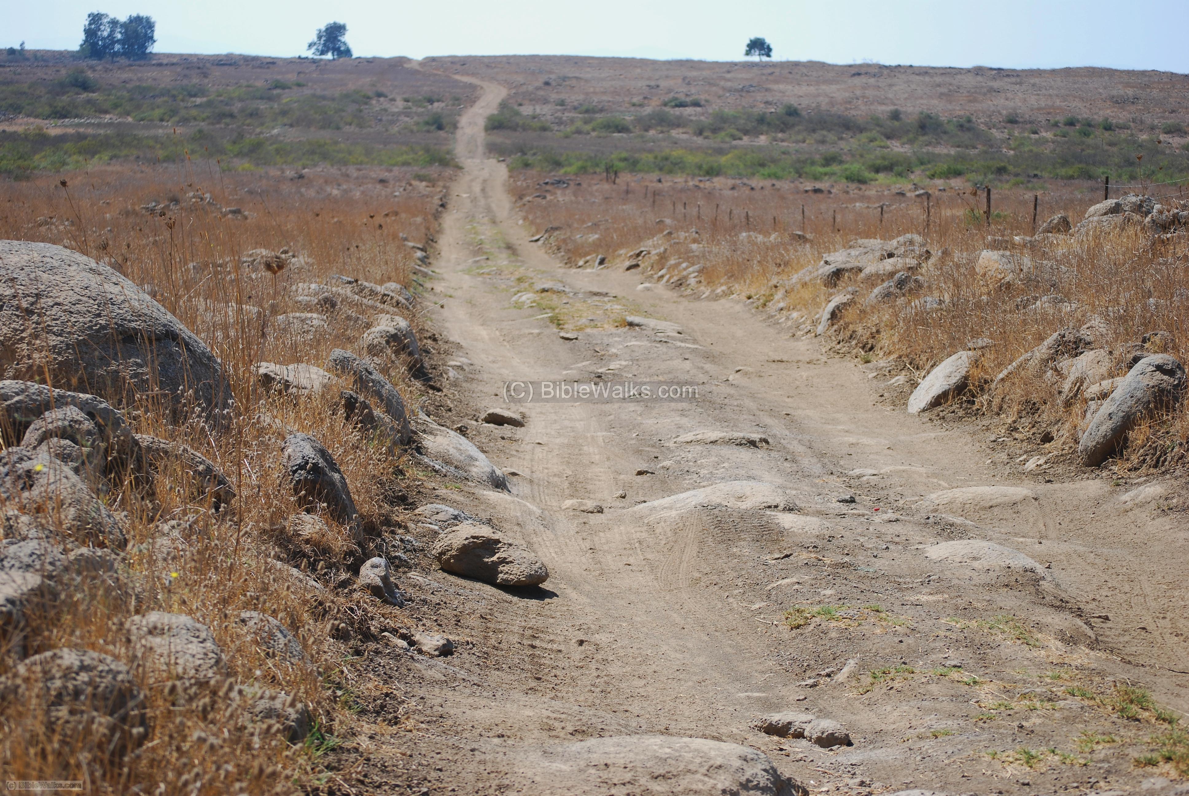 Drawn road road milestone Roman road Gamla roads near