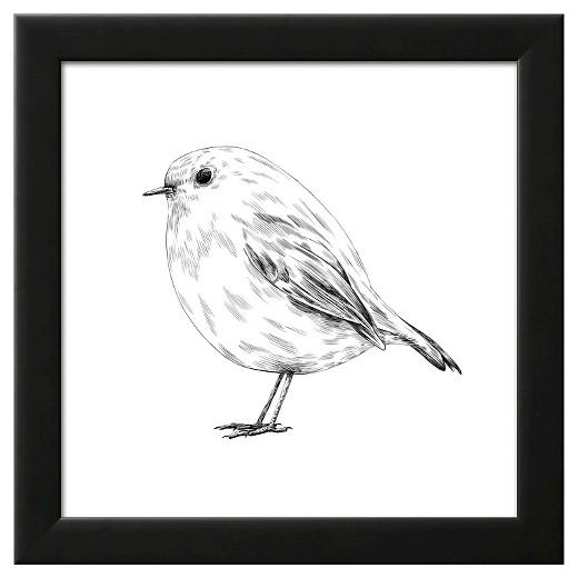 Drawn robin #3