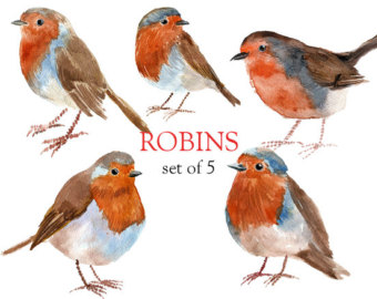 Drawn robin clipart Clip flowers  Floral от