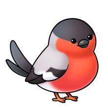Robin clipart cute #3