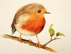 Drawn robin cute Art 7 Home Tattoos print