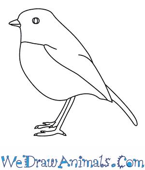 Drawn robin easy  Robin a Draw How