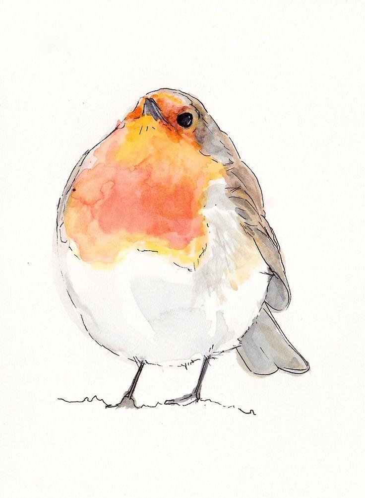 Drawn robin garden Robin drawing www cupofteaillustration Brougham