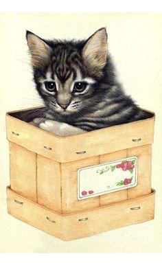 Drawn robin kitten Victorian net Vintage Cat and