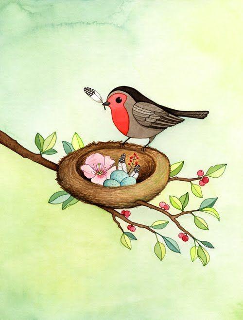 Drawn robin nest Best Birdie Robin nest drawing