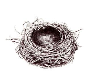 Drawn robin nest Print drawing Bird or an