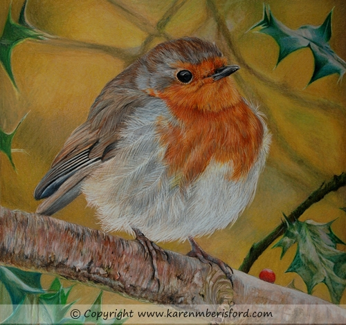 Drawn robin pencil Barisford leaves amongst in British