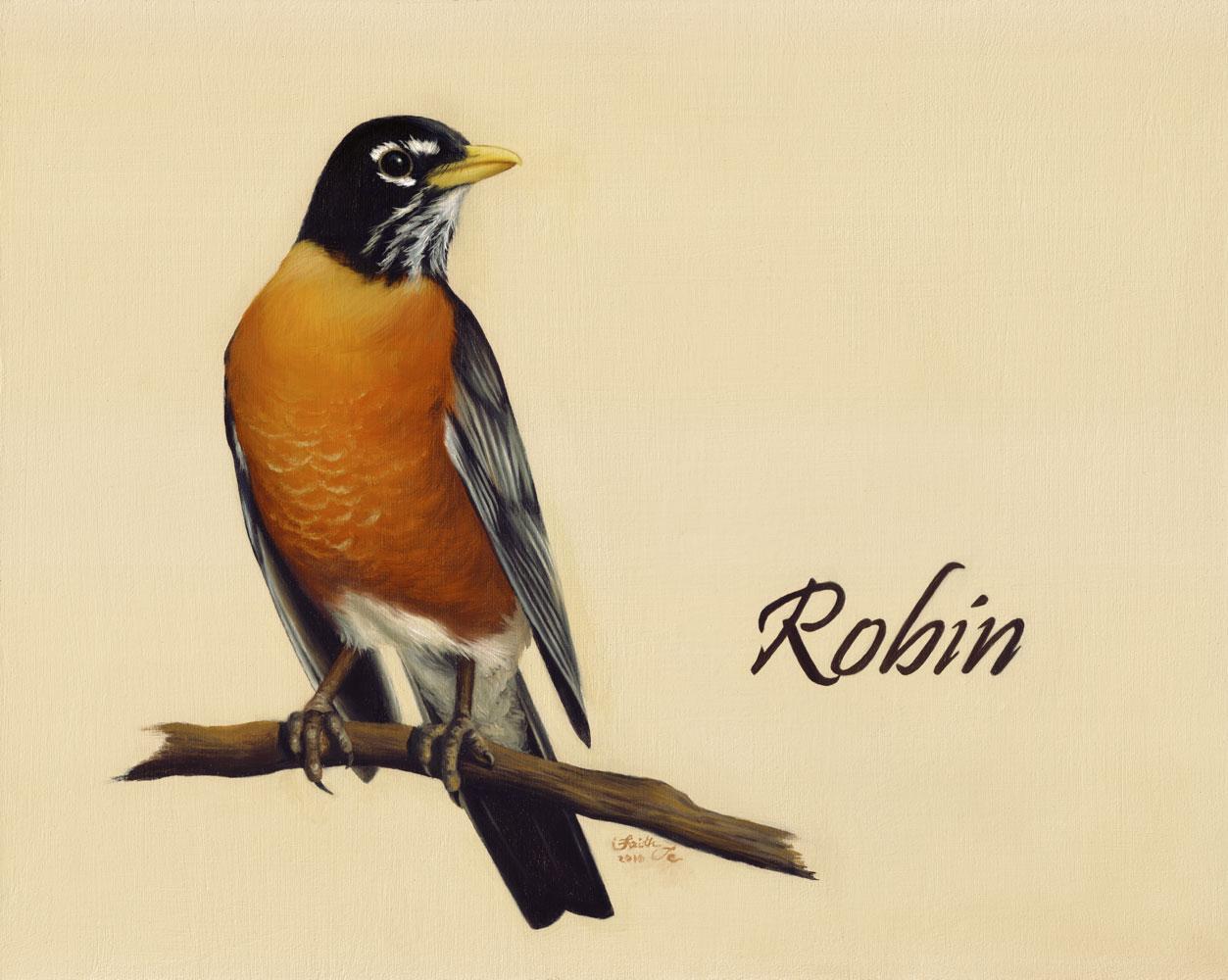 Drawn robin realistic Art oil Faith Fine bird