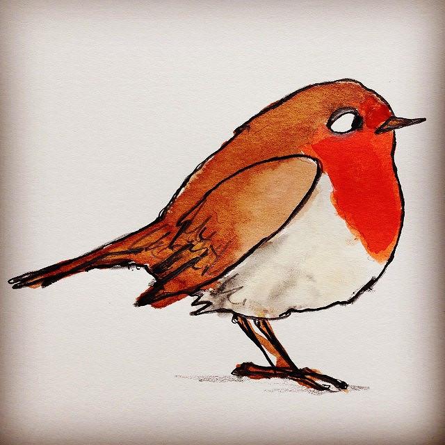 Drawn robin robin bird Creature report: #Hannahscreaturereport Flickr Creature