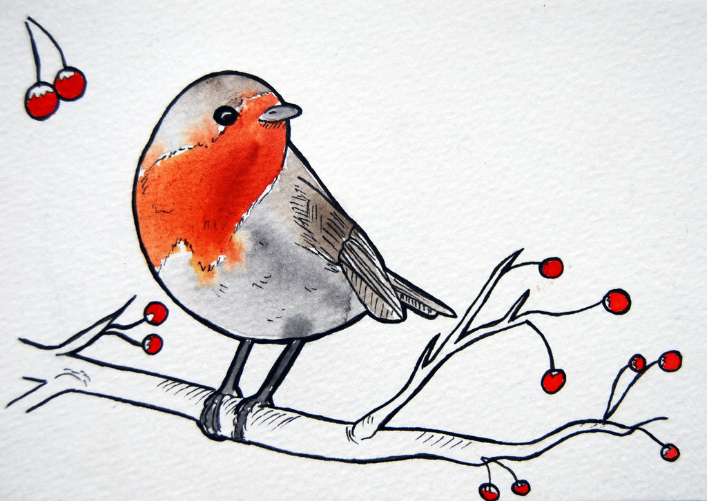 Drawn robin robin bird Tattoos Pinterest bird bird a