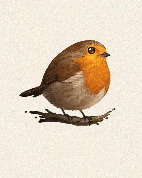 Drawn robin robin bird Rollins images Pinterest bird Paulie
