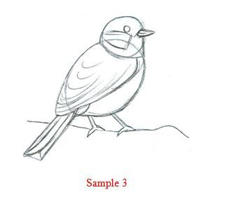 Drawn robin simple On Best to a bird