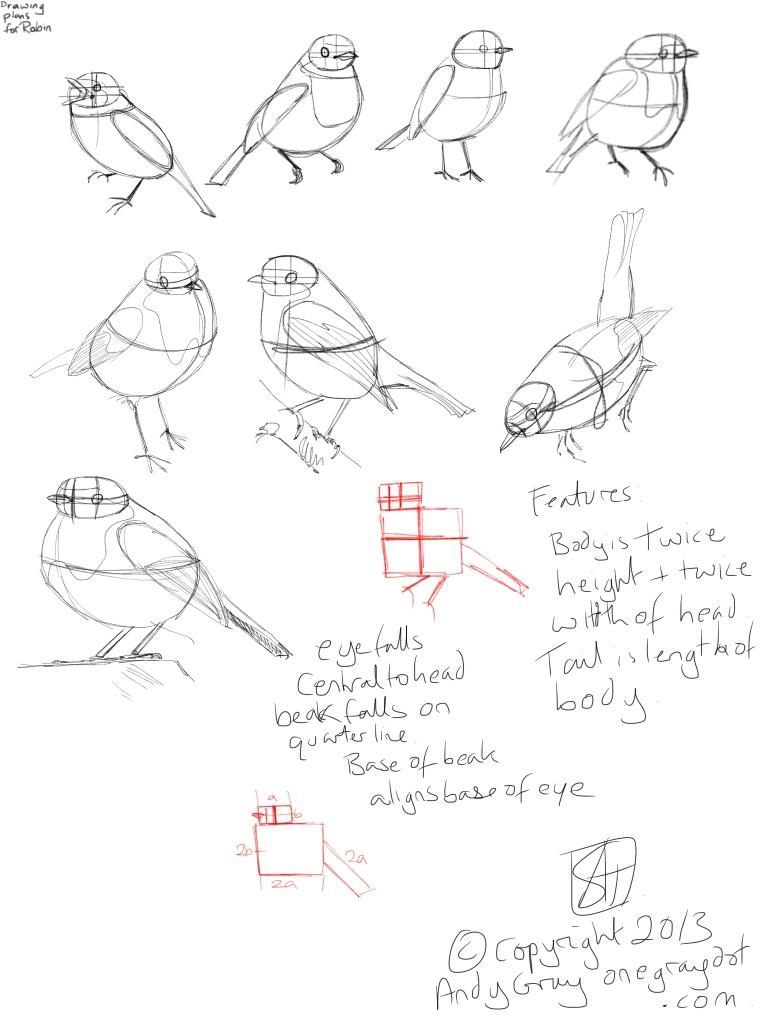 Drawn robin sketch A Art sweet robin Pinterest