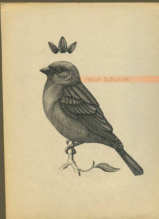 Drawn robin sparrow 10 Afbeeldingsresultaat best 66847_438214699601328_704402381_n sparrow
