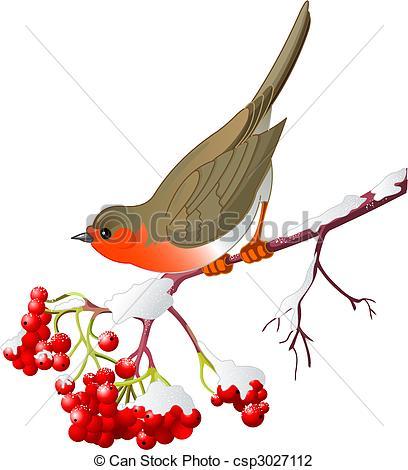 Drawn robin winter bird Vector Winter  bird sitting