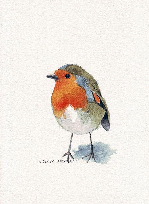 Drawn robin winter bird On bird these draw and