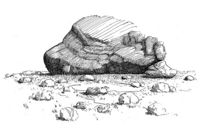 Drawn rock Trees Plants How rock rock