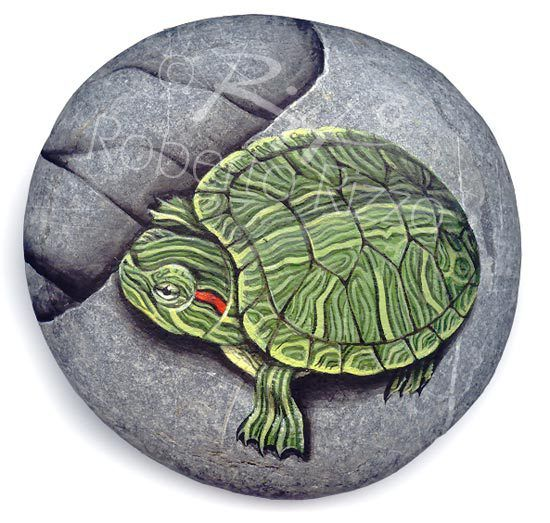 Drawn rock animal Drawing best 2148 on Pin