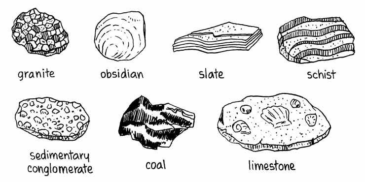 Drawn rock metamorphic rock Rocks Include fossils remains; or
