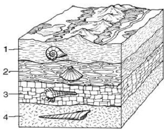 Drawn rock sediment And REVIEW SCIENCE [Duplicate] of