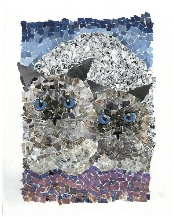 Drawn rock torn paper Paper Cats Inspirations Collage