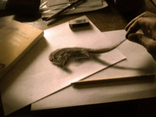 Drawn rodent 3d hd With Amazing Pics 30 tagged