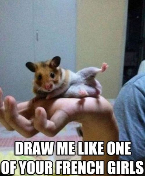 Drawn rodent adorable  and Meeskas 331 Rodents