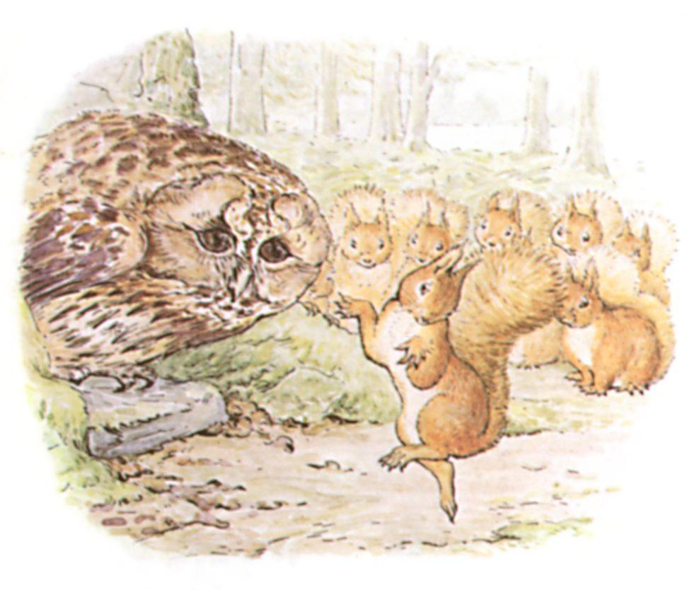 Drawn rodent beatrix potter Squirrel illustrations Potter potter Squirrel