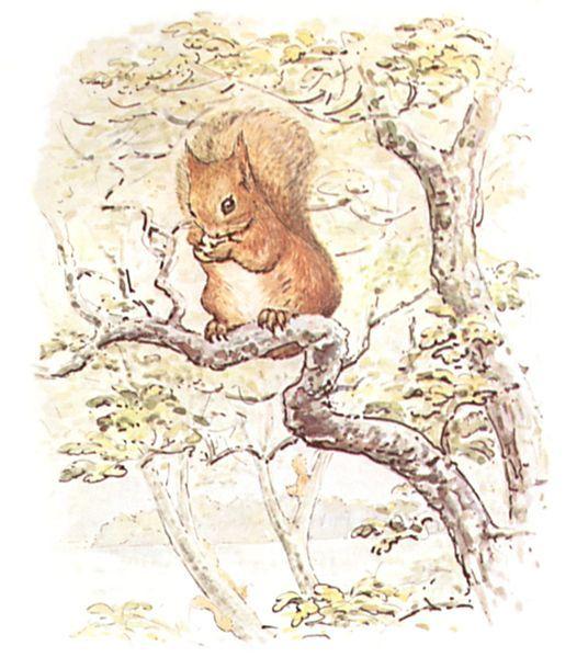 Drawn rodent beatrix potter Potter Potter this Beatrix Pin