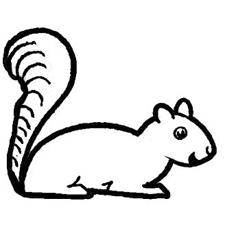 Drawn rodent black and white cartoon Esquilos with Squirrels on How