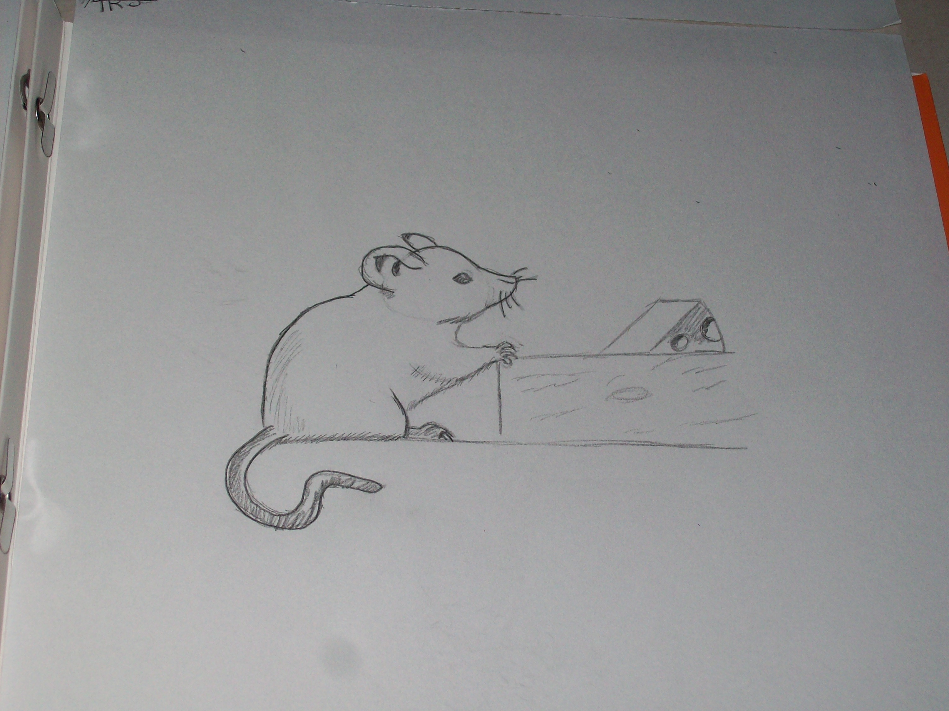 Drawn rodent cheese Cheese missy9309 And Aug Drawing