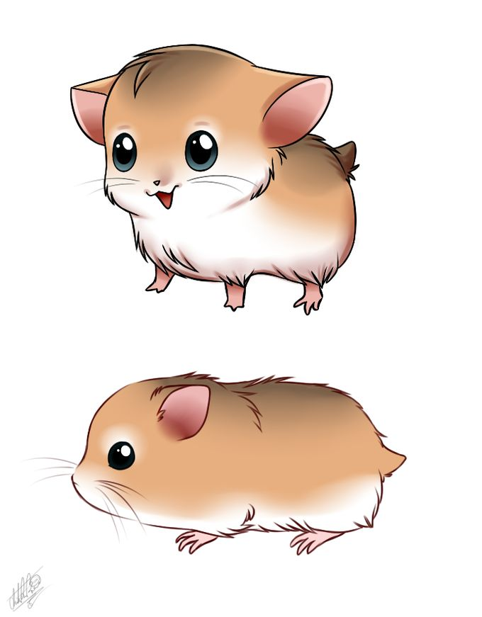 Drawn rodent chibi Other rodents) 275 images (and