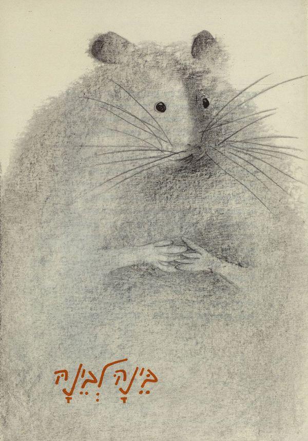 Drawn rodent child Book Tzarfati  best Illustrations
