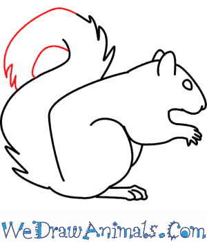 Drawn rodent easy Draw A Print To How