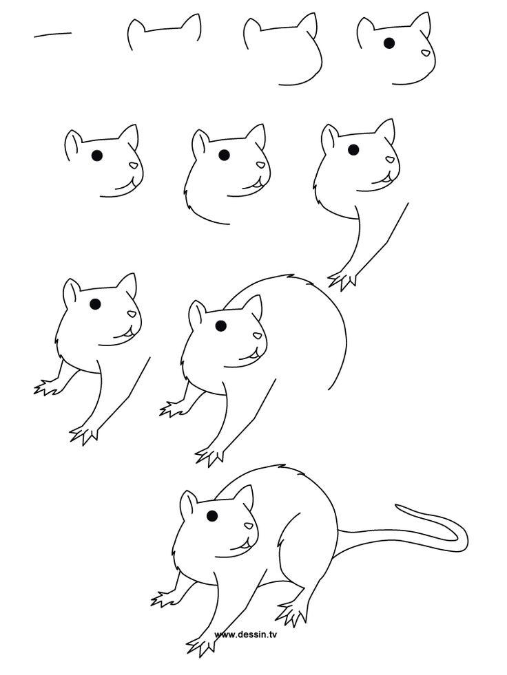 Drawn rat for kid step by step animal Step rat simple Love on