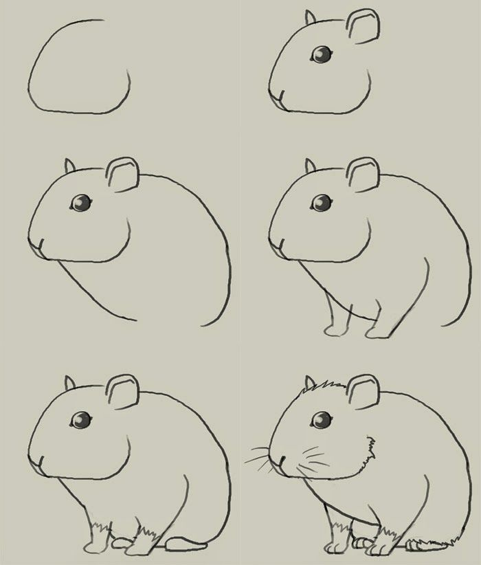 Drawn rodent kindergarten Mouse drawing Pinterest on 28