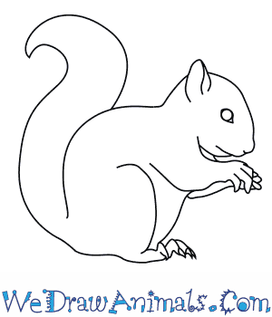Drawn rodent line drawing How Red Draw a
